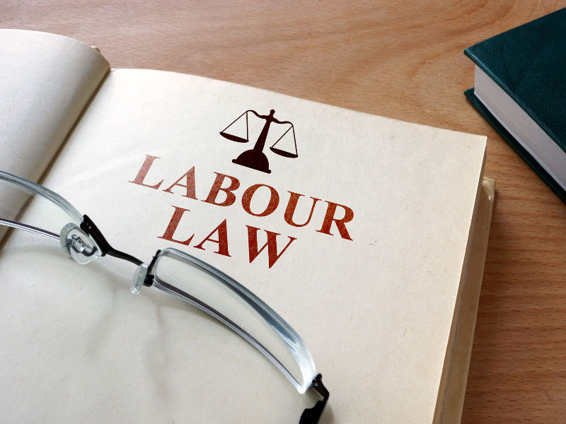 Image result for Labour Law 800X600
